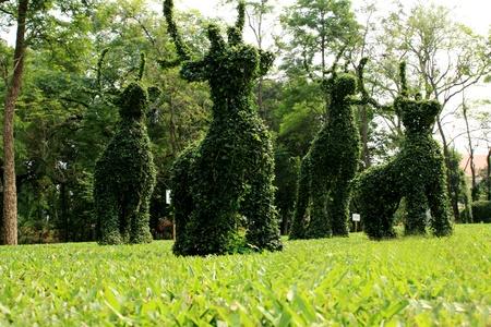 Animal tree in garden. Stock Photo - 9310445