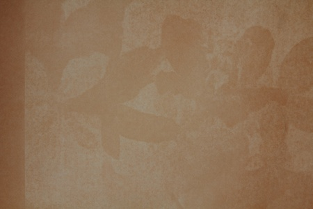 a paper vintage texture background for media photo