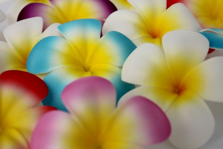 factitious: Fake flowers made of rubber