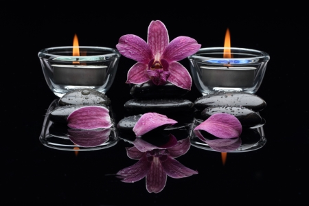 thai orchid: Spa Thai Include orchid , stone ,candle  and Turmeric Stock Photo