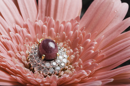 red gram: jewelry with flower Stock Photo