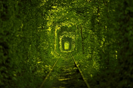 Tunnel of Love in Oekraïne Stockfoto