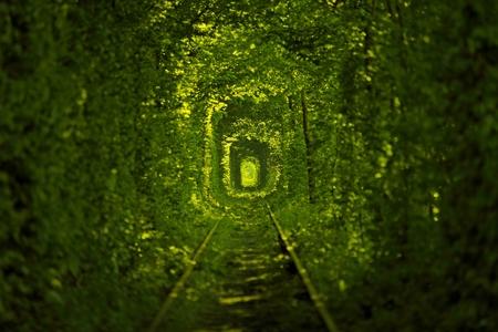 Tunnel of Love in Oekraïne Stockfoto - 63208499