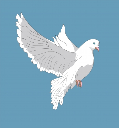 Fluing pigeon on blue background. photo