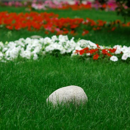 composure: pietra nel centro di fower