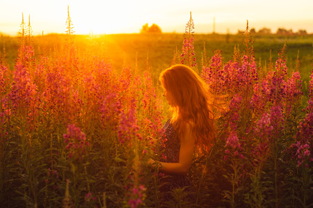 foxy girls: Beautiful girl in profile on field, sun backlight, sunrise, orange colors