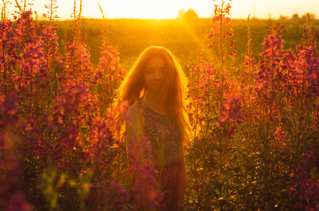 foxy girls: Beautiful girl on field, sun backlight, sunrise, orange colors, looking to the camera