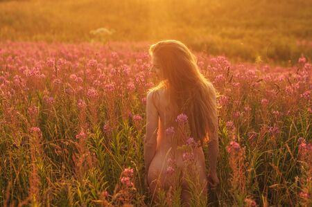 Femme nue restant par retour parmi les champs de Sally en fleurs au coucher du soleil