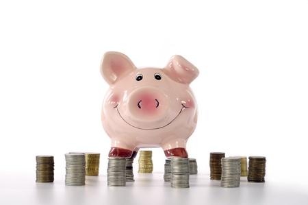 cuenta bancaria: rosa alcanc�as de pie en las monedas