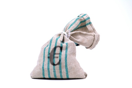 economise: money bag with the Euro currency symbol isolated on a white background