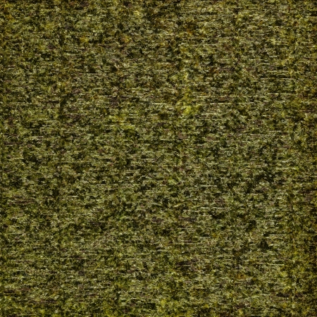 High quality background made from dried algae