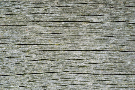 Hight detailed old wooden background  photo