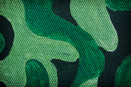 camo: Military background made of cotton with camo colors