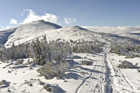 Widok na Śnieżkę w górach Polski Olbrzym