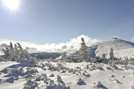 Zimowy krajobraz w polskich górach