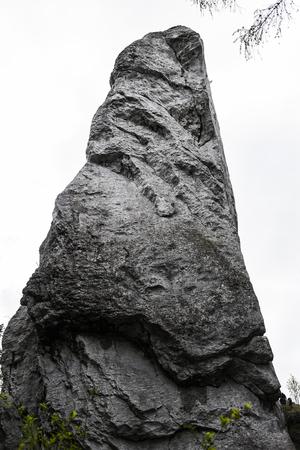 Polish Jurassic rocks on a hill in Jura krakowsko czestochowska.