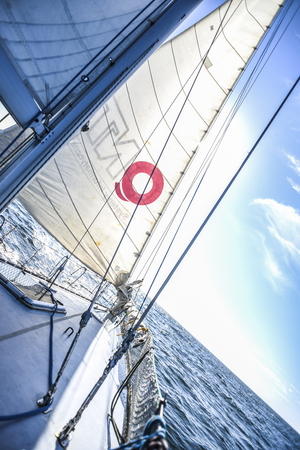 Sails on a sailboat at sea in the north of summer.