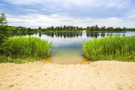Lake landscape. Beautiful view of the lake in summer.