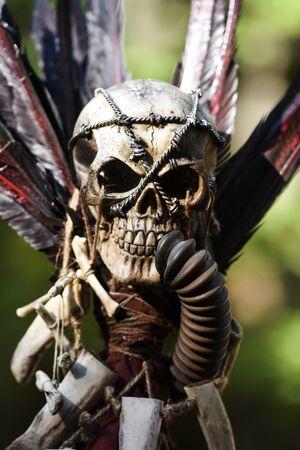 Crâne post-apocalyptique. Banque d'images