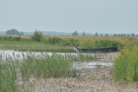heave: Lake Switaz. Clean, clear water. Rest in Ukraine. Volyn Stock Photo
