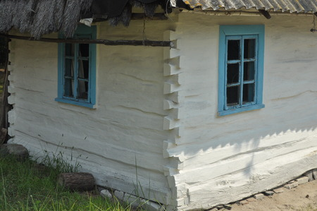 Old cottage in the Ukraine, in a pine forest. Volyn.