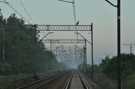embankment: Railroad tracks on the embankment.