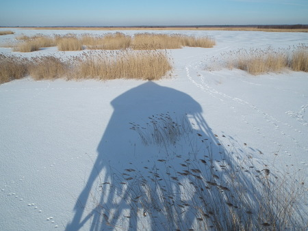 observations: Observation Tower on the shore of a frozen lake. Reedbeds icebound