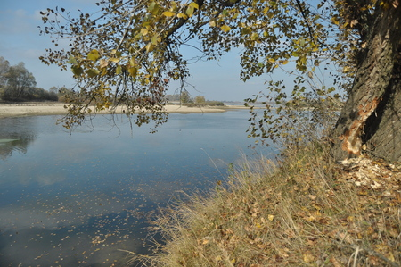 curren: The river with a strong current of the morning. Water flowing into the estuary. Central Vistula Stock Photo