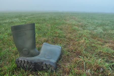 botas de lluvia: Botas de lluvia, botas de goma en una pradera h�meda. Niebla en la ma�ana