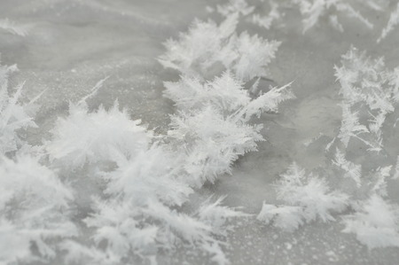 ice sheet: Streaks of snow. Snowflakes on the ice. Winter and frost. ice sheet
