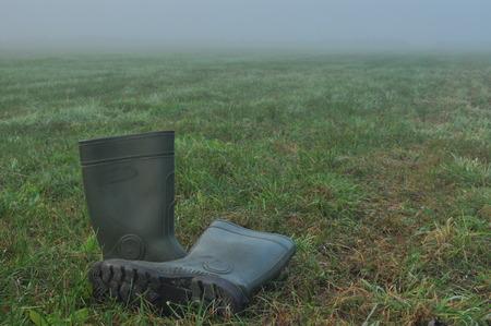 rain boots: Botas de lluvia, botas de goma en una pradera h�meda. Niebla en la ma�ana