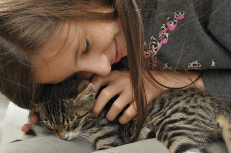 stroking: Small kitten sitting on a girls lap. Stroking and hugging mascot, pet.