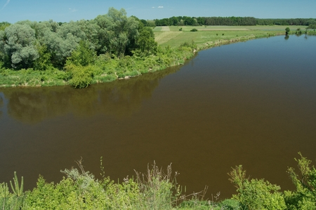 oxbow: Bug River. Poland wschodnia.Dolina river with trees growing on the shore.