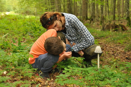 The family, a mother with her son to identify edible and poisonous mushrooms in the forest