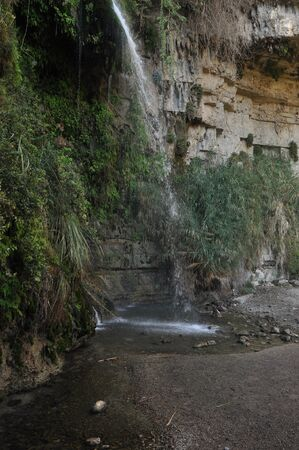 A green oasis with a waterfall and lakes in the Ein Gedi National Park in Israel on the Dead Sea