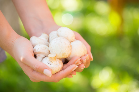 simple life: Woman holding mushroom. Concept - Simple Life. green background