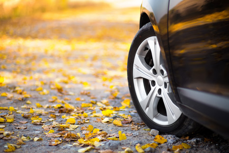 autumn road: The car on the nature. Wheels and tyres closeup near autumn park