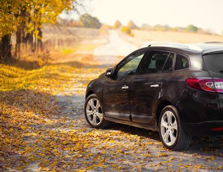 The car on the nature near autumn park Imagens