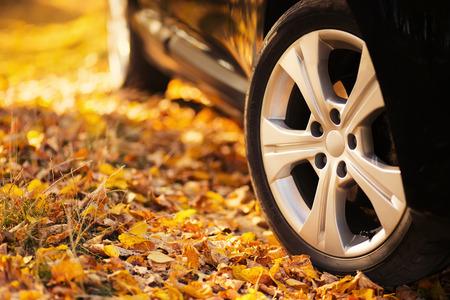 O carro na natureza. Rodas e pneus close up perto parque do outono