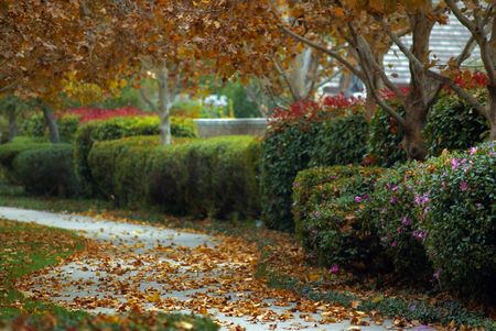 A walkway in Folsom, California during autumn. Stock Photo