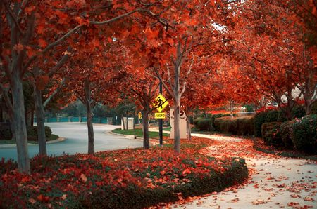 A walkway in Folsom, California during autumn. Stock Photo - 4075412