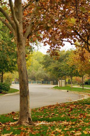 Autumn in Folsom, California.
