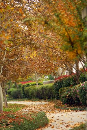 Autumn in California.  The Parkway in Folsom. Stock Photo