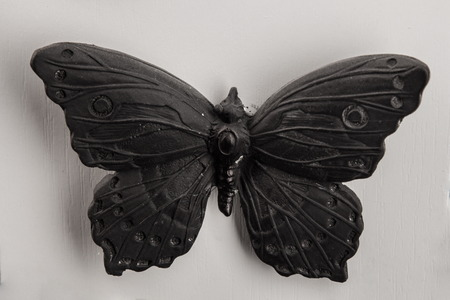 plot: plaster relief butterfly frame