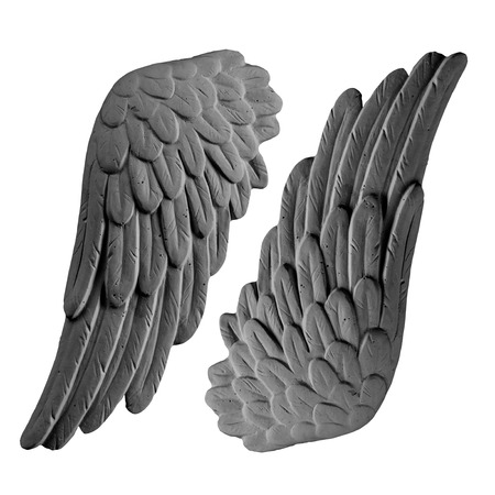angelical: dark plaster wings on isolated white background Stock Photo