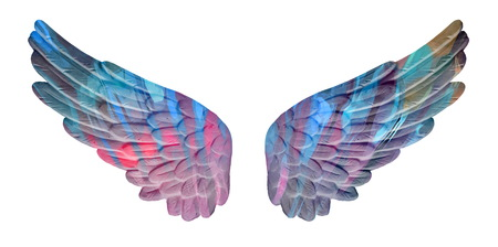 angelical: colored plaster wings isolated on white background Stock Photo