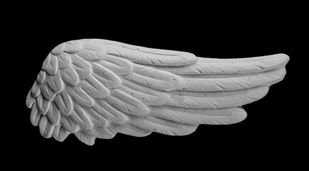 snění: white plaster wing on a black background