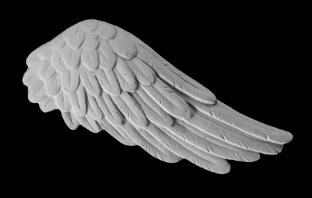 angelical: white plaster wing on a black background