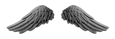 dark plaster wings on isolated white background Stock Photo