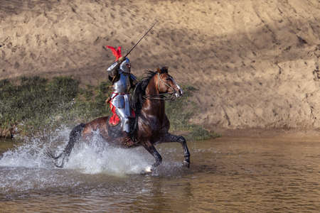 Adult man in ancient knight armor with a sword rides a horse on a river along a sand shore and poses